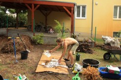 Sheet mulching with paper and cardbord