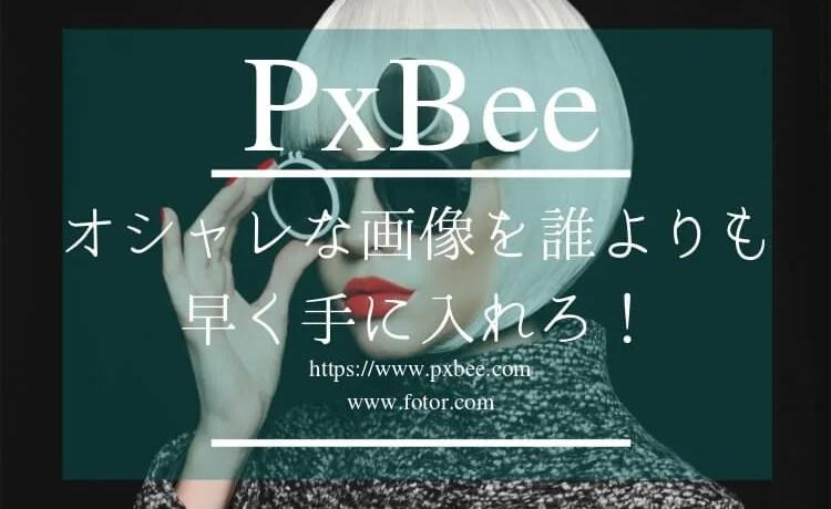 PxBeeの記事