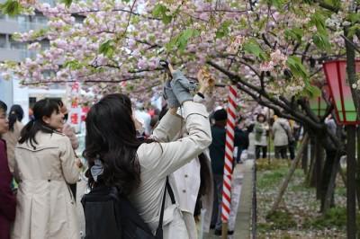 日本に帰国した時に感じること 季節感