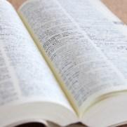 FXの業界用語。よく使われる9つの言葉とは?
