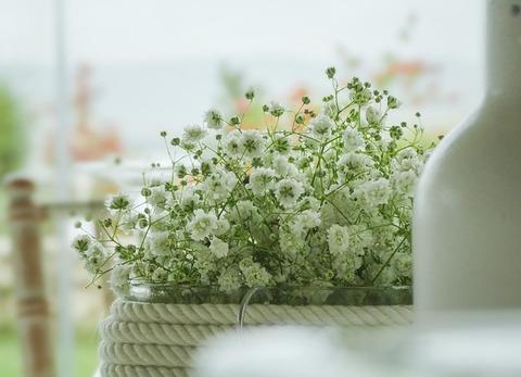 flowers-2850892_640