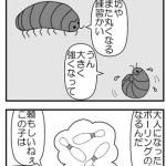 ダンゴムシの夢【Genta Breaktime】