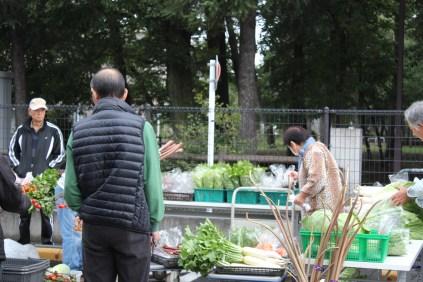野菜販売_11