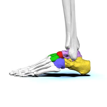 交通事故での捻挫及び打撲の患者さんの1症例