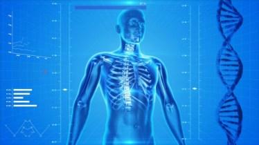 なぜ、背骨のズレや歪みが自律神経に影響を及ぼすのか?【理由と対策方法について】