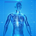 なぜ、背骨のズレや歪みが自律神経に及ぼすのか?【理由と対策方法について】