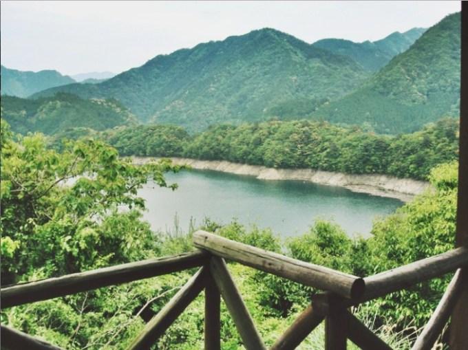 《平成の森》からみた池原ダムの風景