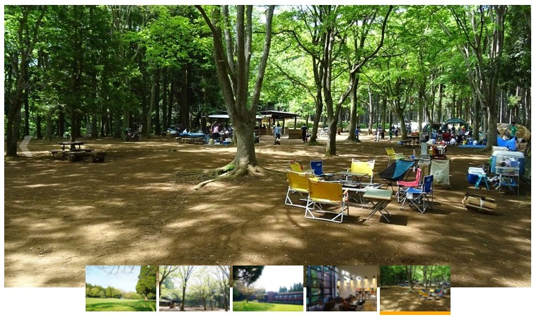 昭和の森フォレストビレッジの風景