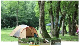 和泉前坂家族旅行村 前坂キャンプ場の様子