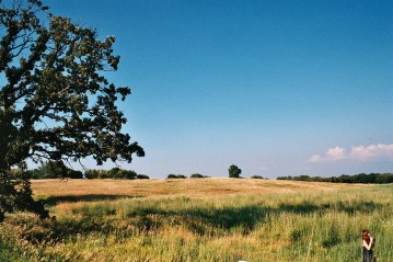 Huntley, 2007