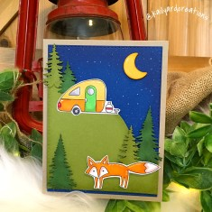 Fox Camping Greeting Card Photo