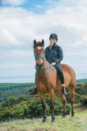 Sarah Van Deelen (Welfare Officer): Sarah is a professional Bowen Therapy Practitioner at Sarah's Equine Therapy, based in Auckland. For every Kaimanawa that she treats, Sarah donates $10 to KHH.