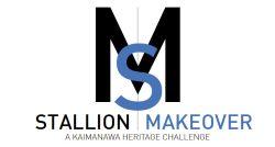 Stallion Makeover