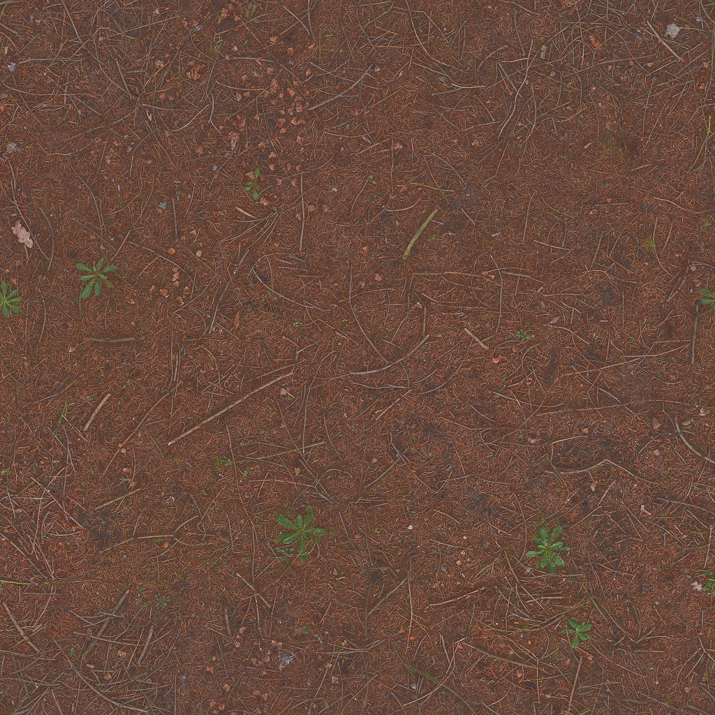 Pine Forest Ground | 3D Scanned Textures