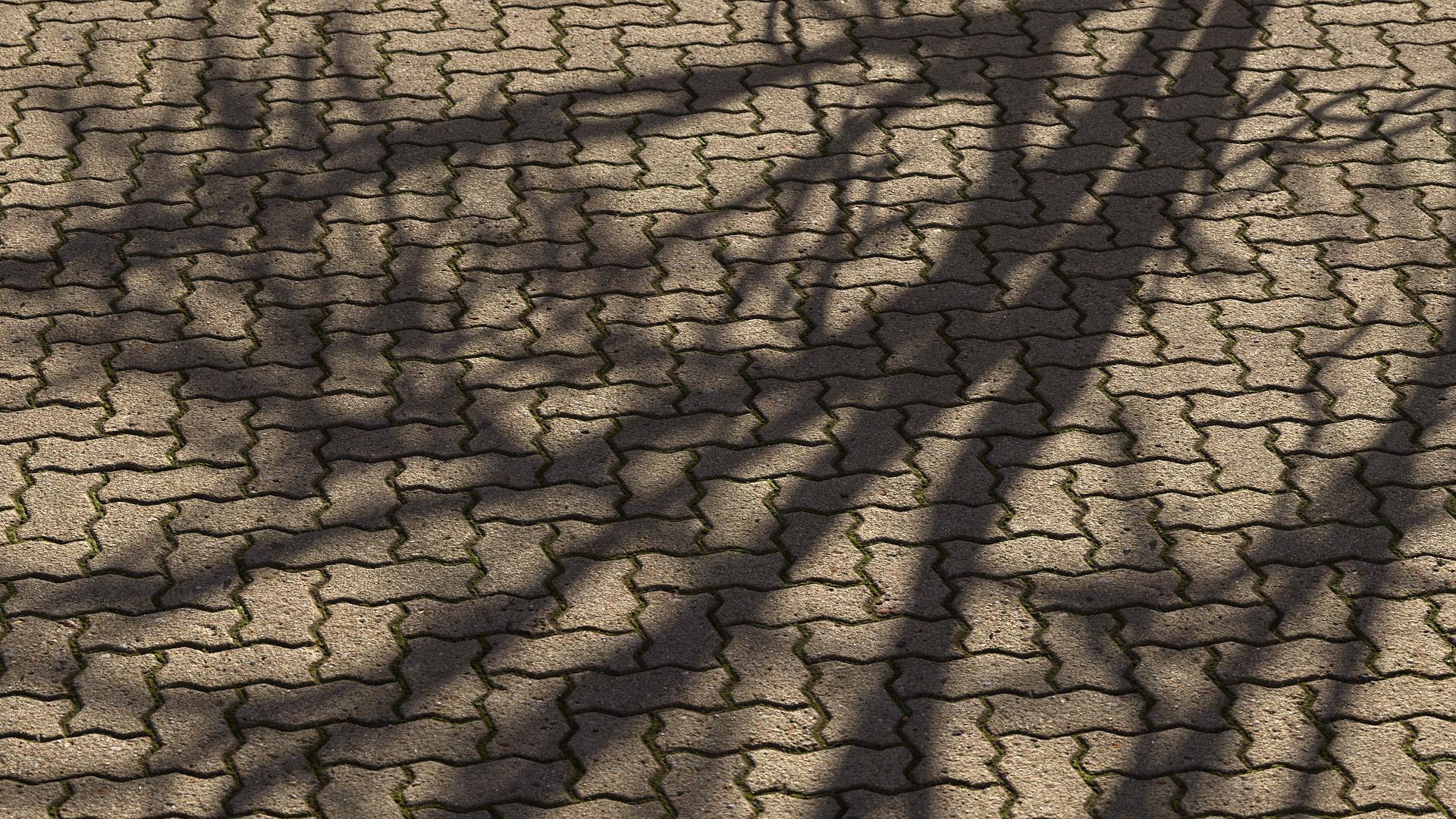 Pavement Herringbone | 3D Scanned Textures