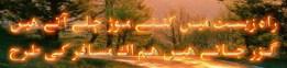 cropped-cropped-cropped-329402_10151330831142557_883429286_o.jpg