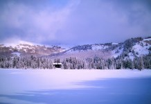Neige abondante cet hiver