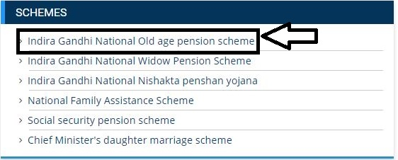 Madhya pradesh Indira Gandhi Vridhavastha Pension Scheme 2020 In Hindi