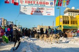 2017 Iditarod Starting Line