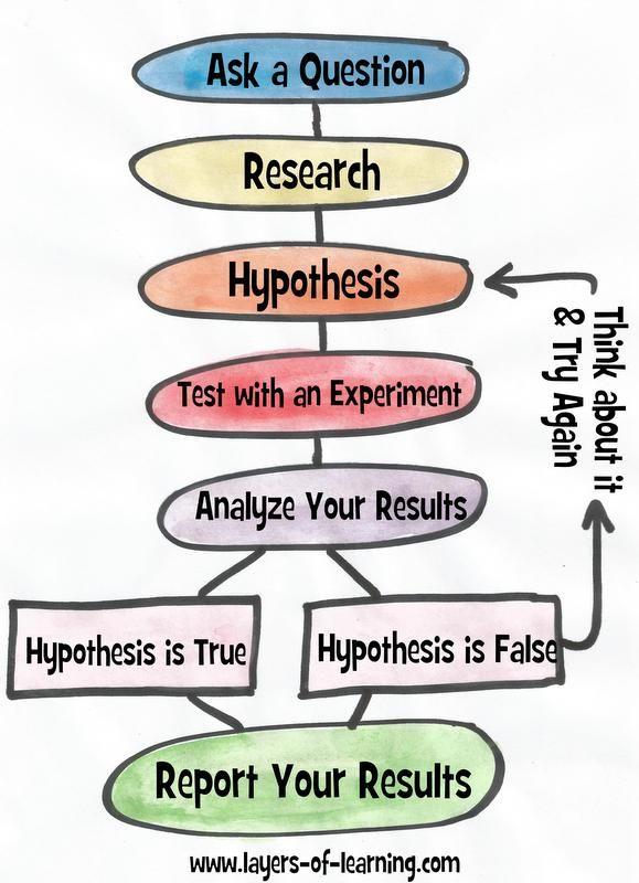 BIO 1 ESSAY QUESTIONS EXAM 1 Essay Questions On The Scientific Method