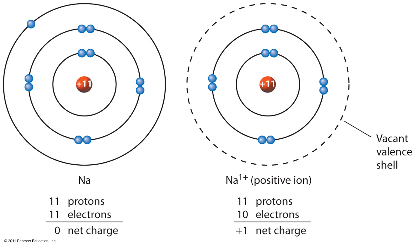 What Are Valence Electrons Amp How Are They Related To The