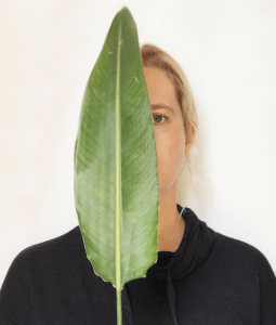 kaitlin willow with leaf