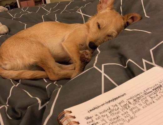sleeping benny and writing notebook