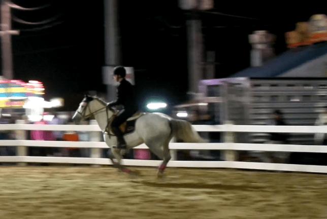 sassy-jumping-1