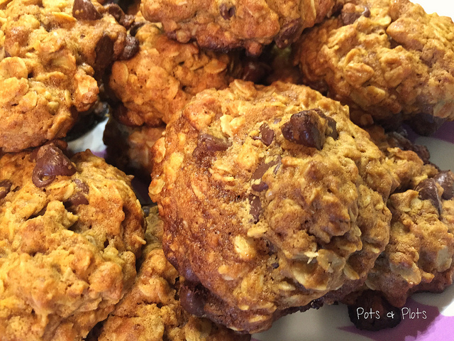 Salted Dark Chocolate Oatmeal Cookies