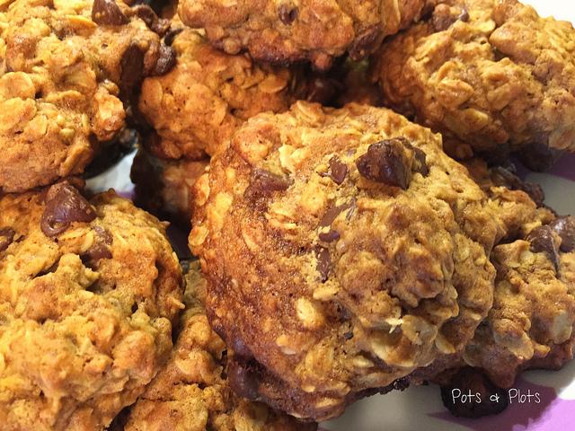 Salted Dark Chocolate Oatmeal Cookies