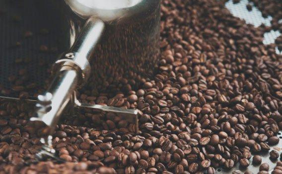 Granos de café Kaitxo