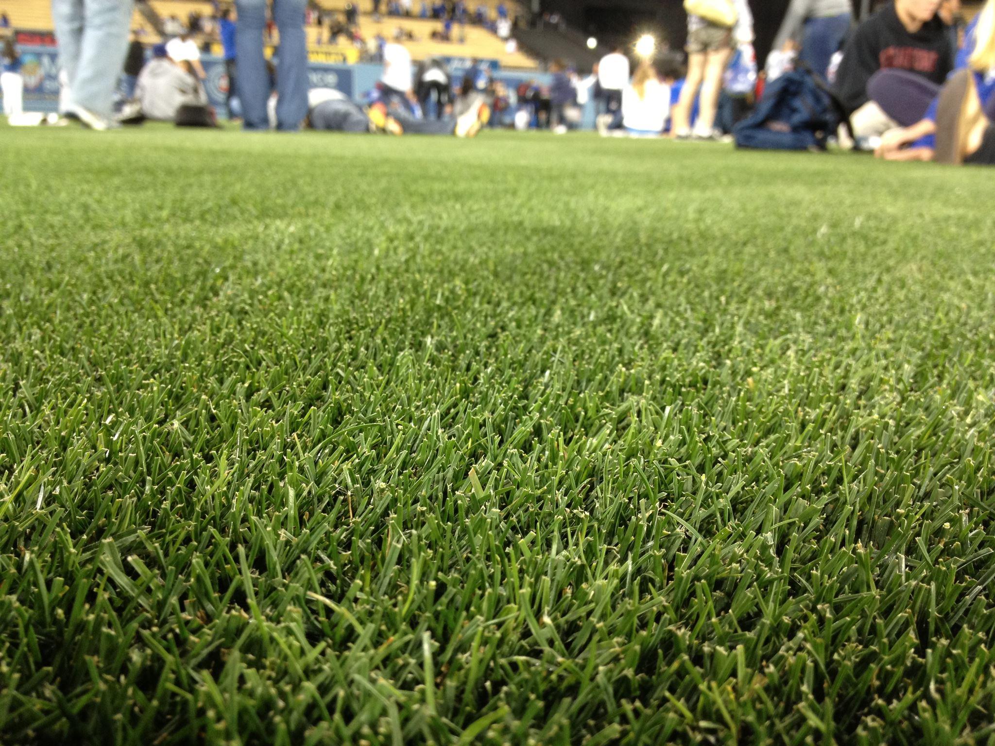 Los Angeles Dodgers baseball field