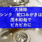 【大掃除】茂木和哉でキッチンステンレス蛇口シンク頑固な水垢落とし
