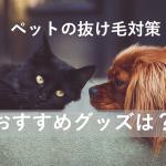 ペットの抜け毛対策おすすめの掃除グッズは?犬や猫と上手に暮らそう