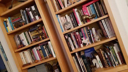 Kajmeister books 1