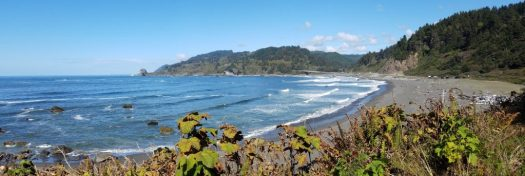 Yurok Loop Trial ocean view