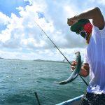 海釣りするならおすすめのルアーはコレだ