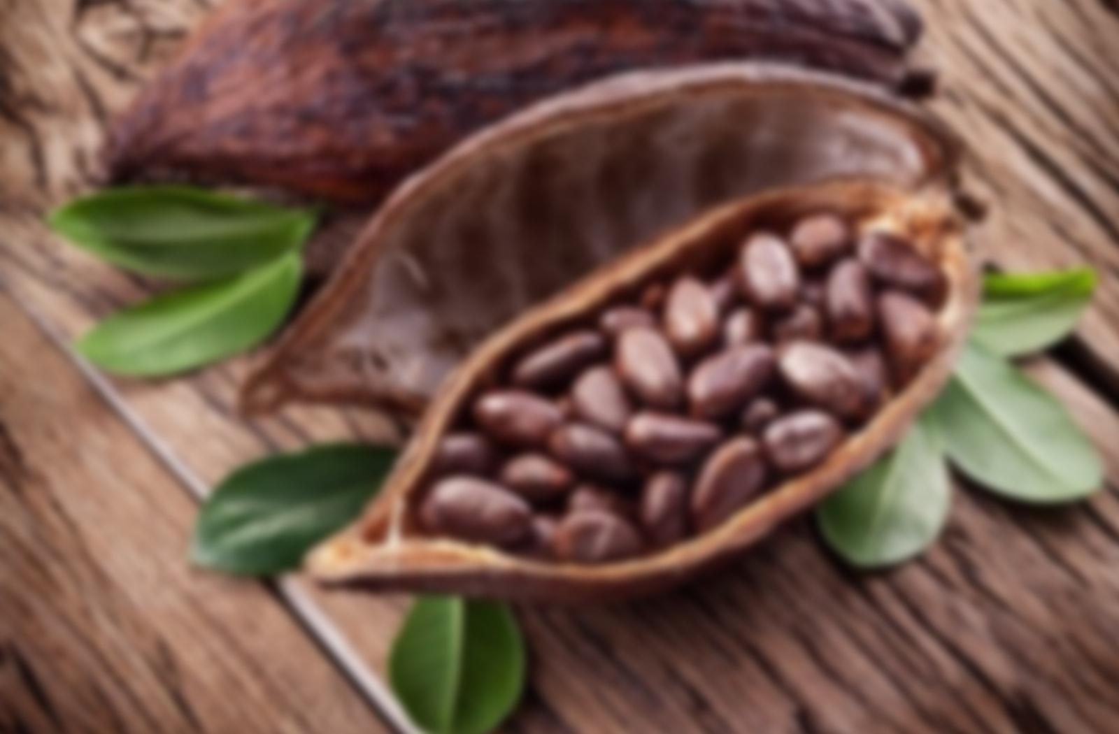 Wo kann man Kakaonibs kaufen