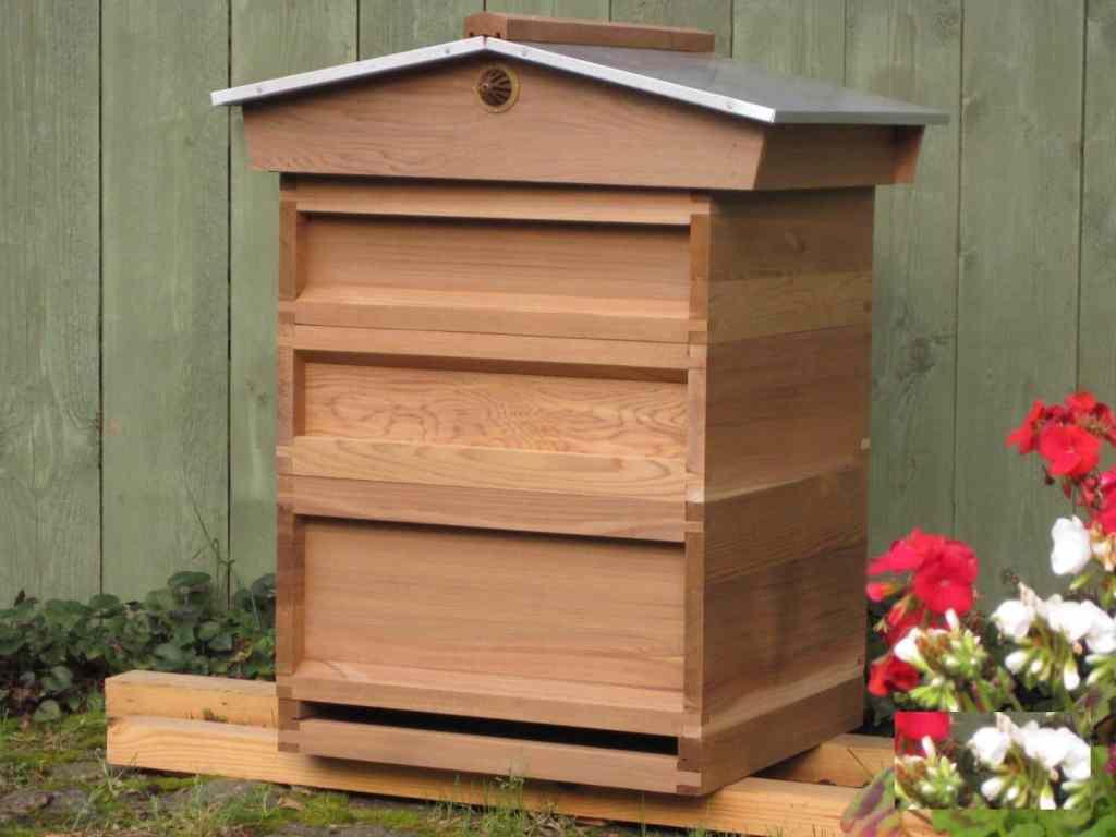 Как да създадем силно пчелно семейство с помощта на кошер с магазин под плодника?
