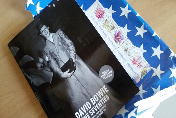 David Bowie - Hanekroot
