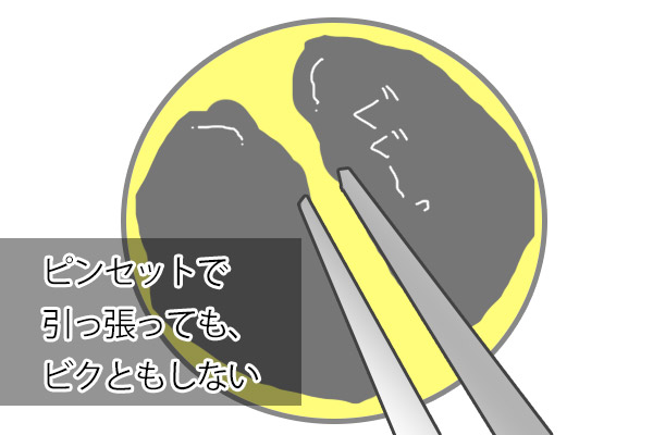 20160425-03