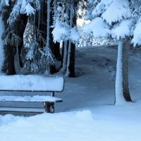 28 января - Сегодня Павлов день и День колдунов. Общаемся с домовым