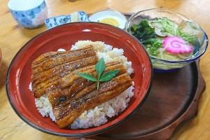 うなぎ 細麺うどんセット