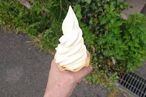 ゴールデンミルク から作られたソフトクリーム