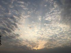 travel_raj-bhavan_p-07