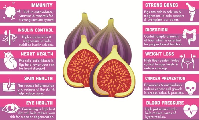 Uses of Figs Fruit :