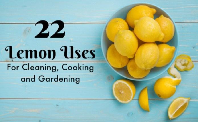 Lemon Uses :