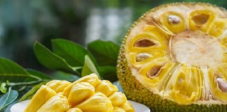 Health Benefits For Jackfruit : | Health Tips | Daily Health Tips | Top 10 Best Health Benefits | Easy To Follow Daily Health Tips
