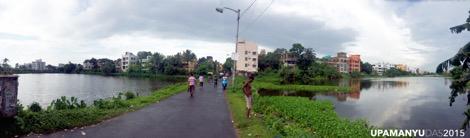 Ponds Panorama