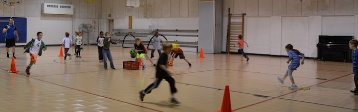 The Physical Education Program